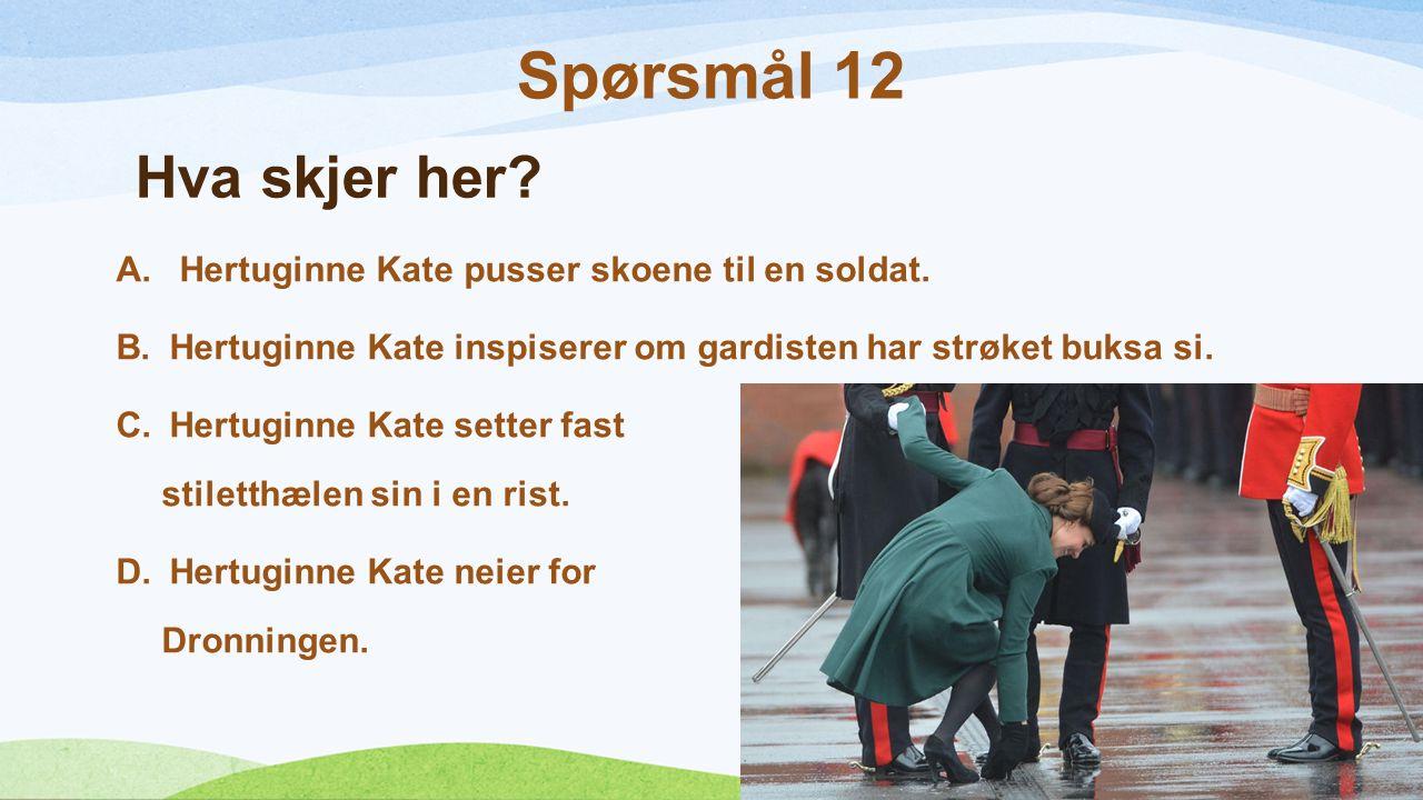 Hva skjer her? A. Hertuginne Kate pusser skoene til en soldat. B.Hertuginne Kate inspiserer om gardisten har strøket buksa si. C.Hertuginne Kate sette