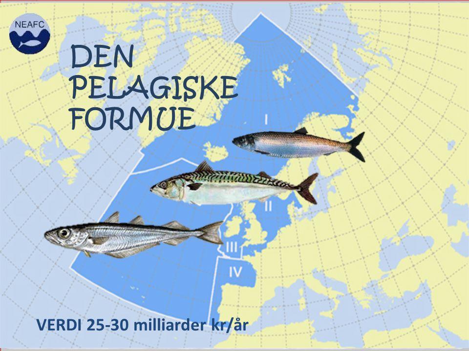 DEN PELAGISKE FORMUE VERDI 25-30 milliarder kr/år