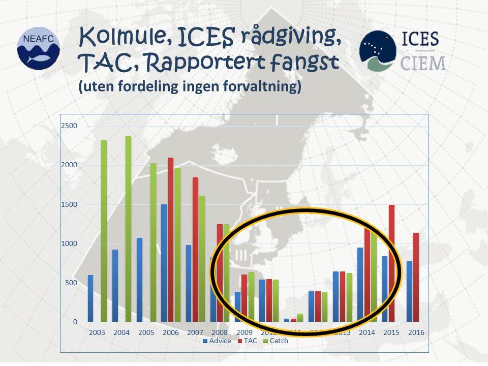 Kolmule, ICES rådgiving, TAC, Rapportert fangst (uten fordeling ingen forvaltning)