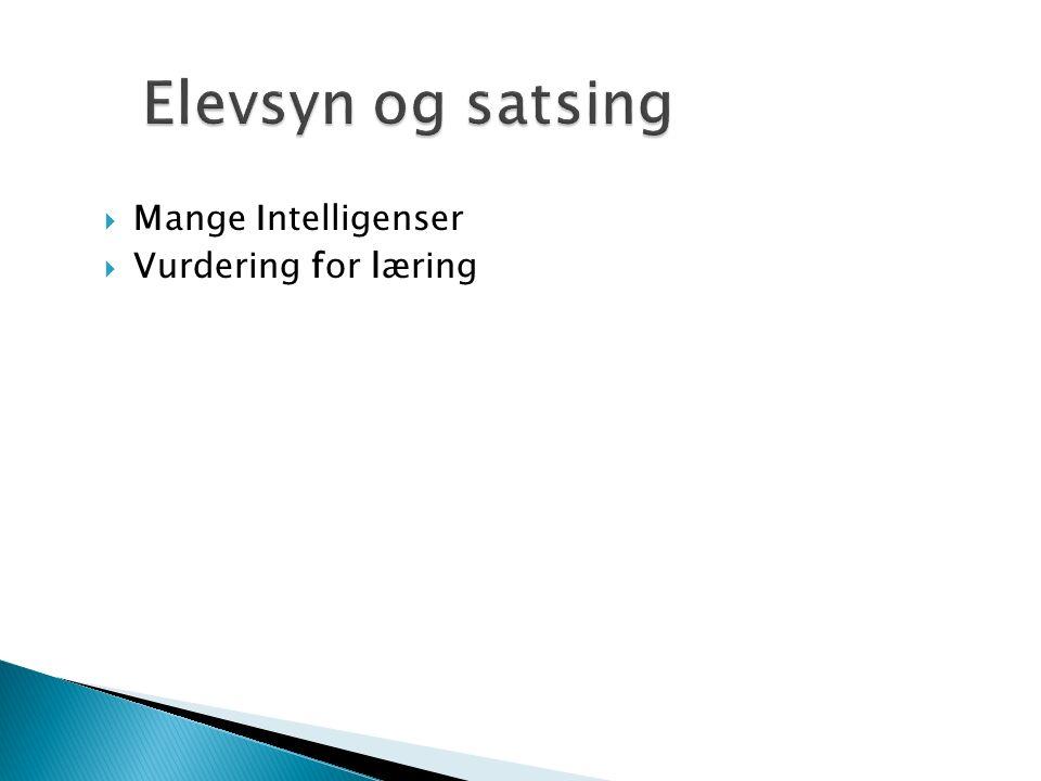  Mange Intelligenser  Vurdering for læring