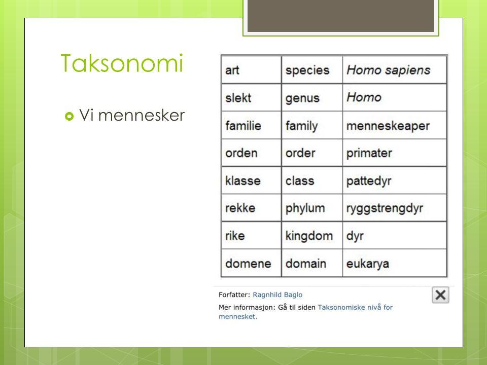 Taksonomi  Vi mennesker