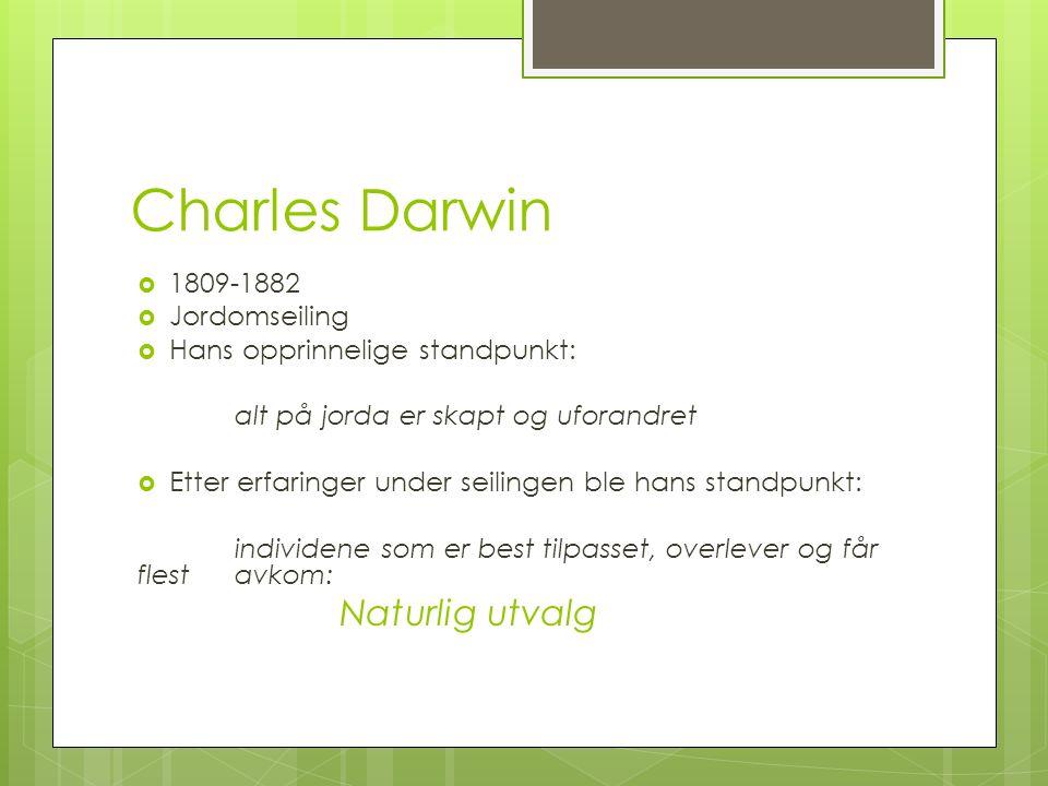 Charles Darwin  1809-1882  Jordomseiling  Hans opprinnelige standpunkt: alt på jorda er skapt og uforandret  Etter erfaringer under seilingen ble hans standpunkt: individene som er best tilpasset, overlever og får flest avkom: Naturlig utvalg