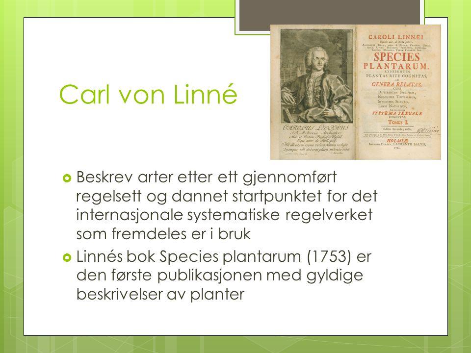 Carl von Linné  Beskrev arter etter ett gjennomført regelsett og dannet startpunktet for det internasjonale systematiske regelverket som fremdeles er i bruk  Linnés bok Species plantarum (1753) er den første publikasjonen med gyldige beskrivelser av planter