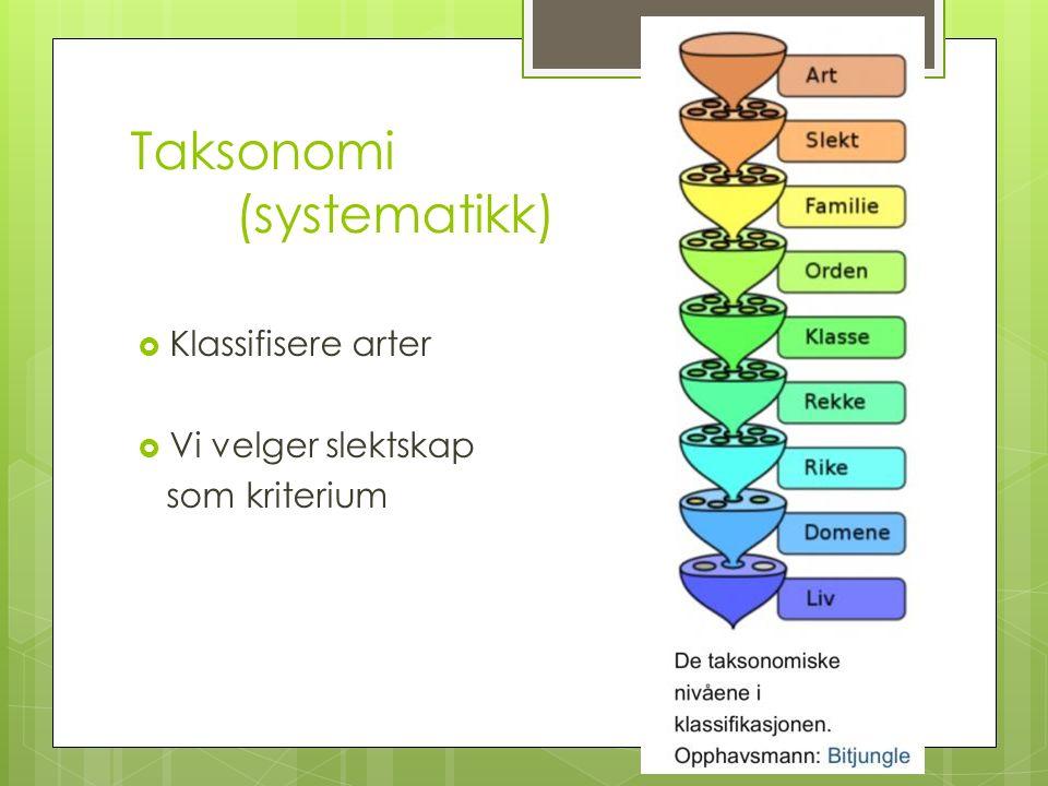 Taksonomi (systematikk)  Klassifisere arter  Vi velger slektskap som kriterium