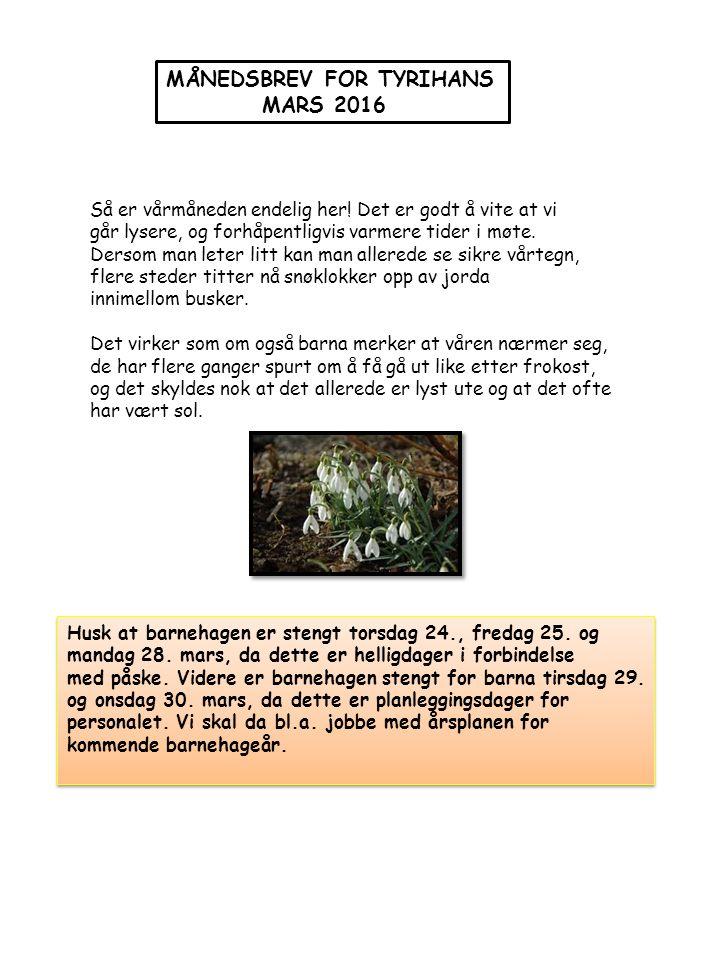 Rommet,-den tredje pedagog….