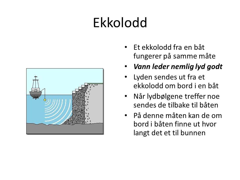 Ekkolodd Et ekkolodd fra en båt fungerer på samme måte Vann leder nemlig lyd godt Lyden sendes ut fra et ekkolodd om bord i en båt Når lydbølgene treffer noe sendes de tilbake til båten På denne måten kan de om bord i båten finne ut hvor langt det et til bunnen