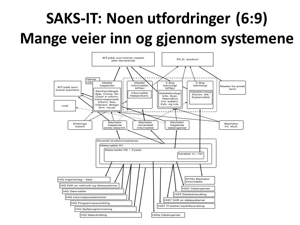 SAKS-IT: Noen utfordringer (7:9) Om samarbeid på utdanningen Det kan stilles spørsmål om vi kan fortsette dette konglomeratet av overlappende utdanninger innenfor en og samme institusjon.