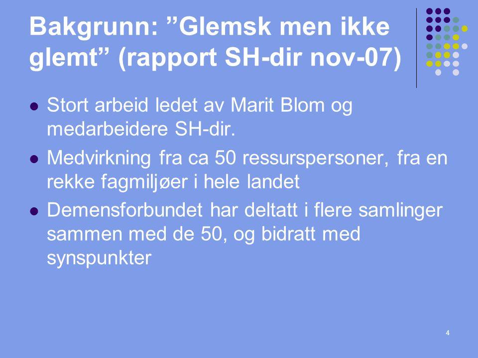 4 Bakgrunn: Glemsk men ikke glemt (rapport SH-dir nov-07) Stort arbeid ledet av Marit Blom og medarbeidere SH-dir.