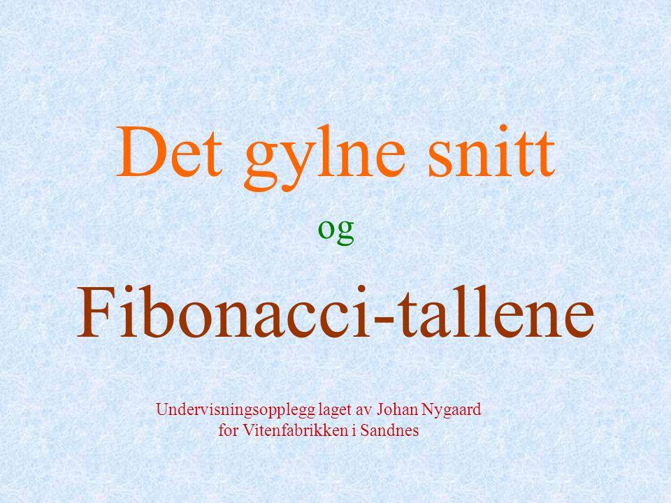 Det gylne snitt og Fibonacci-tallene Undervisningsopplegg laget av Johan Nygaard for Vitenfabrikken i Sandnes