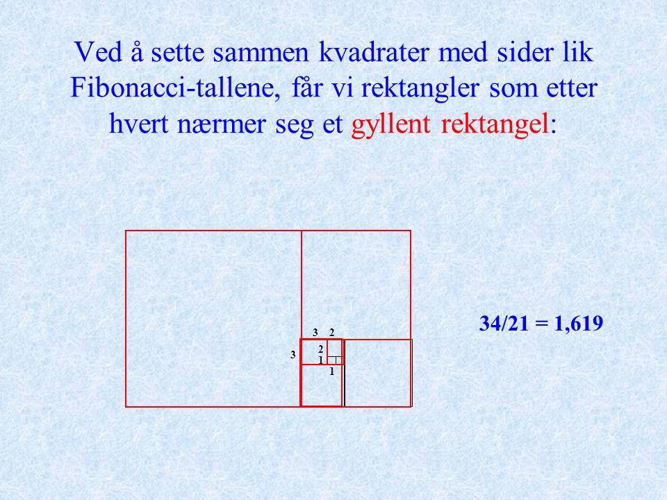 Ved å sette sammen kvadrater med sider lik Fibonacci-tallene, får vi rektangler som etter hvert nærmer seg et gyllent rektangel: 3/2 = 1,505/3 = 1,678/5 = 1,6013/8 = 1,62521/13 = 1,61534/21 = 1,619 1 1 2 2 3 3