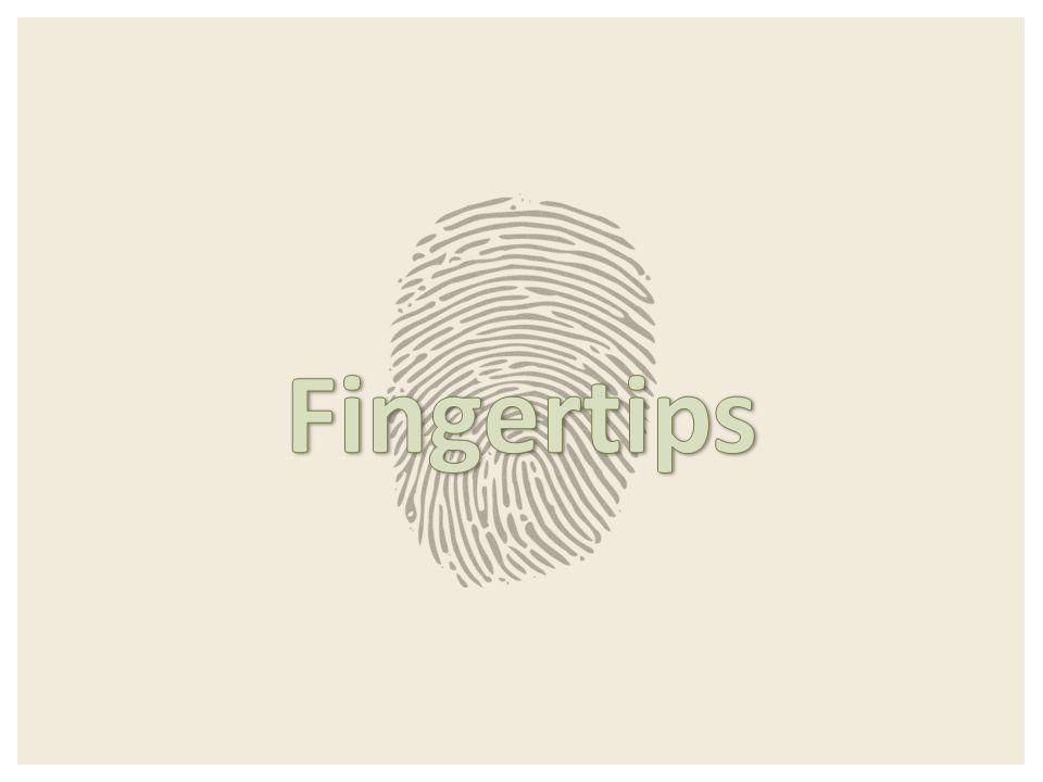 Det viktigste finger-tipset