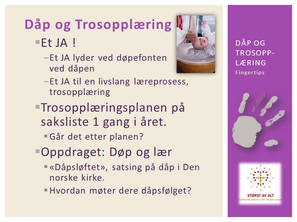 Dåp og Trosopplæring  Et JA .