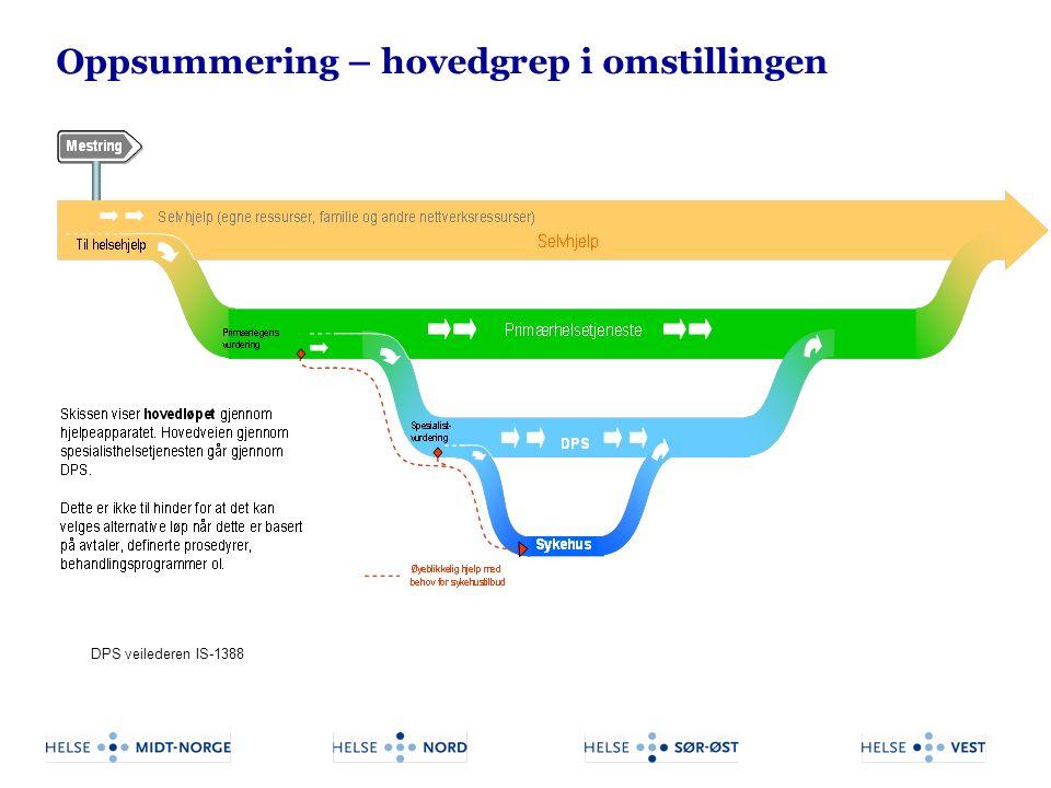 DPS veilederen IS-1388 Oppsummering – hovedgrep i omstillingen
