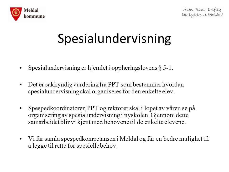 Spesialundervisning Spesialundervisning er hjemlet i opplæringslovens § 5-1. Det er sakkyndig vurdering fra PPT som bestemmer hvordan spesialundervisn