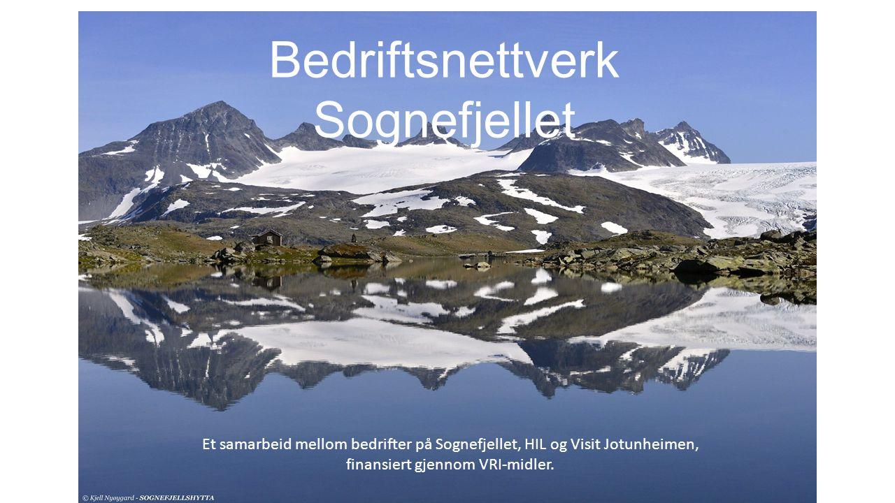 Bedriftsnettverk Sognefjellet Et samarbeid mellom bedrifter på Sognefjellet, HIL og Visit Jotunheimen, finansiert gjennom VRI-midler.