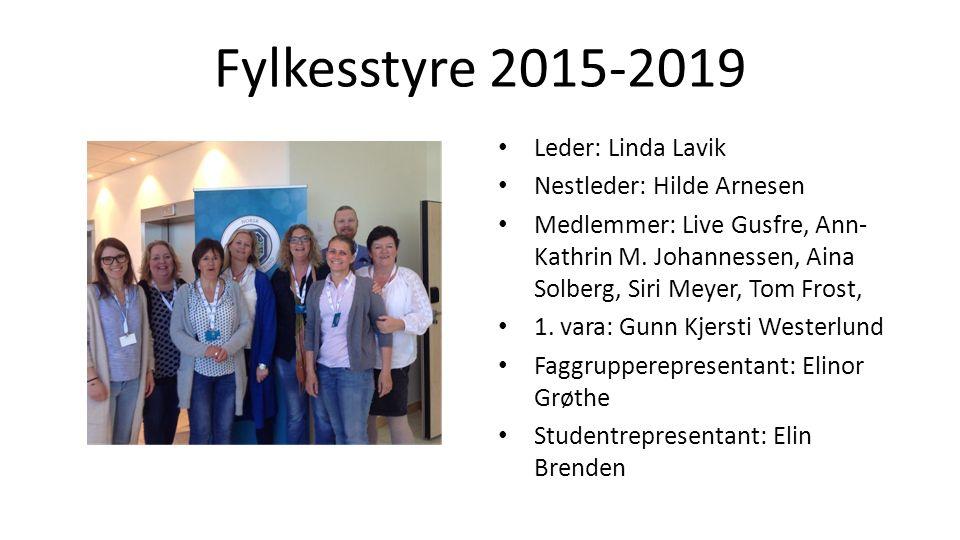 Fylkesstyre 2015-2019 Leder: Linda Lavik Nestleder: Hilde Arnesen Medlemmer: Live Gusfre, Ann- Kathrin M.