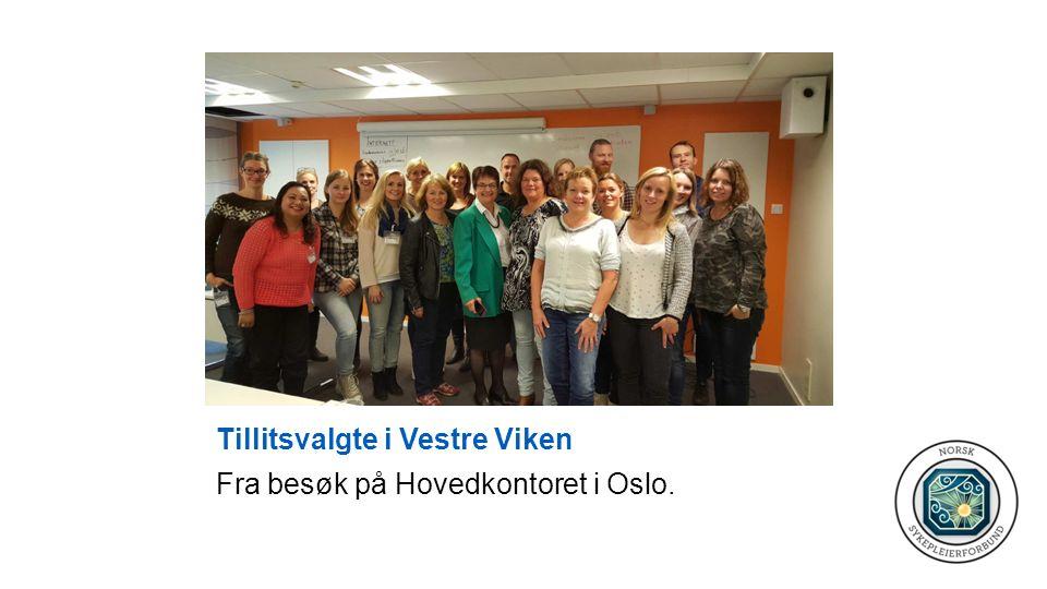 Tillitsvalgte i Vestre Viken Fra besøk på Hovedkontoret i Oslo.