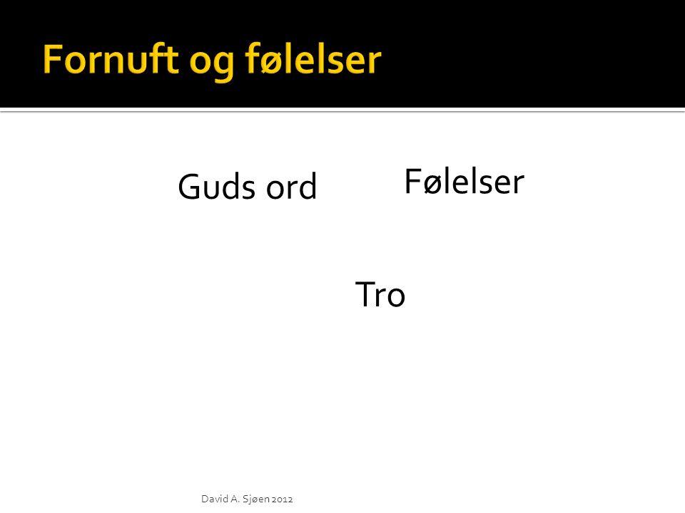 Tro Guds ord Følelser Corbis Images David A. Sjøen 2012