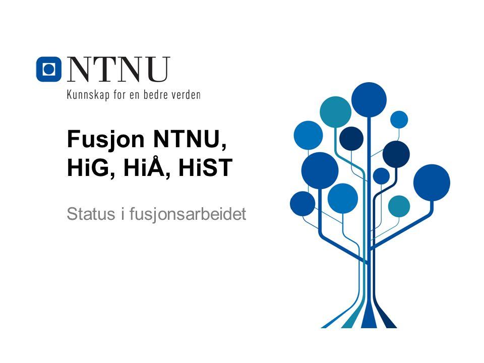 Fusjon NTNU, HiG, HiÅ, HiST Status i fusjonsarbeidet