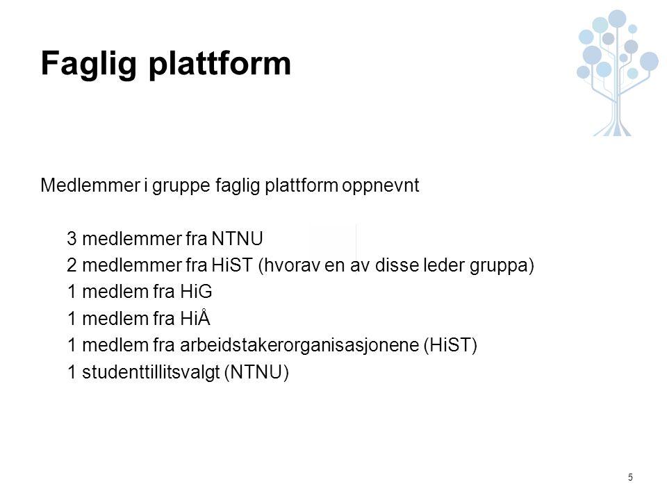 5 Faglig plattform Medlemmer i gruppe faglig plattform oppnevnt 3 medlemmer fra NTNU 2 medlemmer fra HiST (hvorav en av disse leder gruppa) 1 medlem fra HiG 1 medlem fra HiÅ 1 medlem fra arbeidstakerorganisasjonene (HiST) 1 studenttillitsvalgt (NTNU)