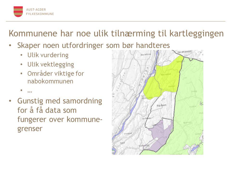 Kommunene har noe ulik tilnærming til kartleggingen Skaper noen utfordringer som bør handteres Ulik vurdering Ulik vektlegging Områder viktige for nabokommunen … Gunstig med samordning for å få data som fungerer over kommune- grenser