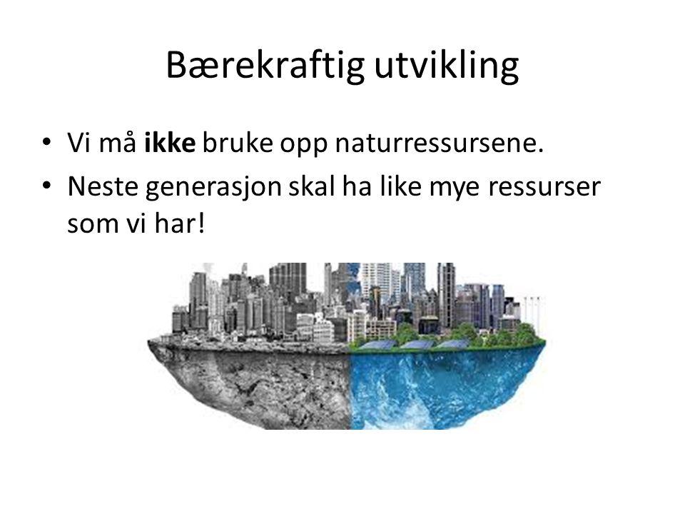 Bærekraftig utvikling Vi må ikke bruke opp naturressursene. Neste generasjon skal ha like mye ressurser som vi har!