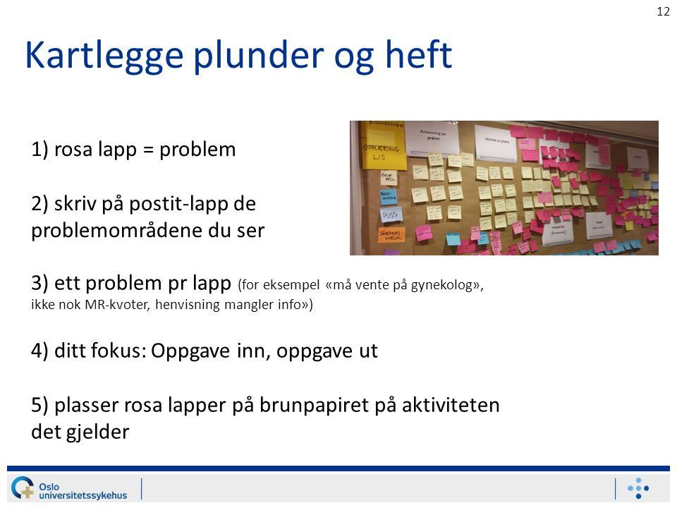 Kartlegge plunder og heft 12 1) rosa lapp = problem 2) skriv på postit-lapp de problemområdene du ser 3) ett problem pr lapp (for eksempel «må vente p