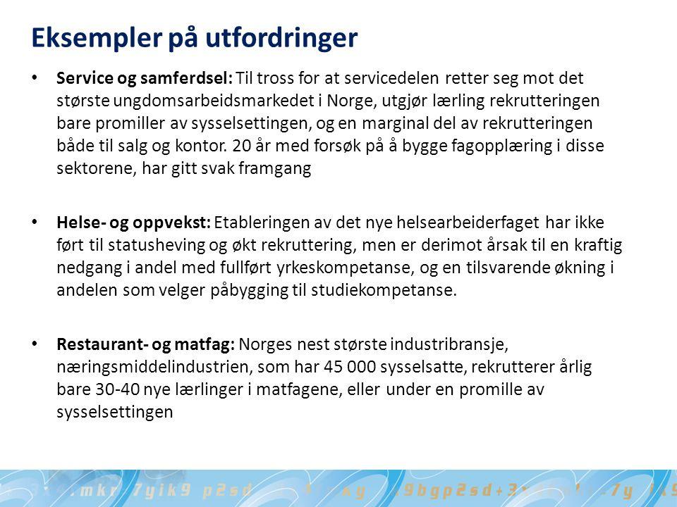 Eksempler på utfordringer Service og samferdsel: Til tross for at servicedelen retter seg mot det største ungdomsarbeidsmarkedet i Norge, utgjør lærling rekrutteringen bare promiller av sysselsettingen, og en marginal del av rekrutteringen både til salg og kontor.