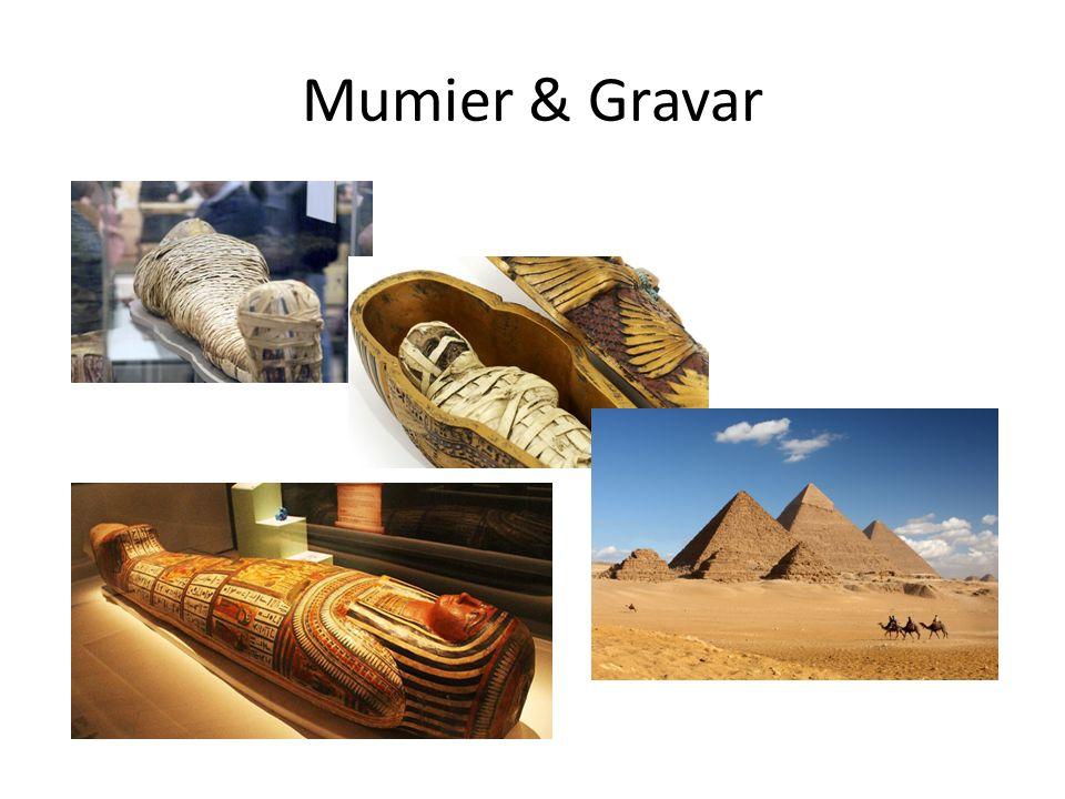 Mumier & Gravar