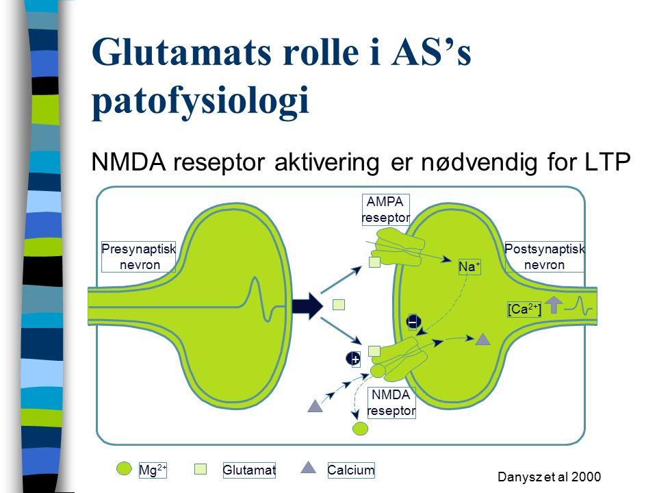 Glutamats rolle i AS's patofysiologi NMDA reseptor aktivering er nødvendig for LTP Danysz et al 2000 Mg 2+ GlutamatCalcium AMPA reseptor Presynaptisk nevron Postsynaptisk nevron NMDA reseptor Na + [Ca 2+ ] + –