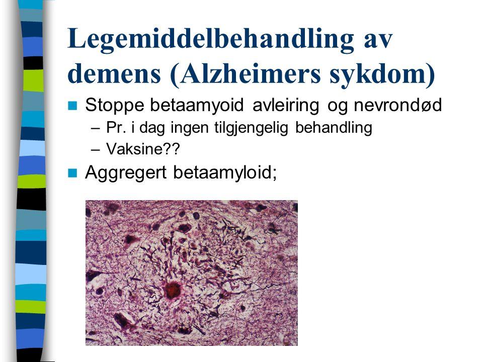 Legemiddelbehandling av demens (Alzheimers sykdom) Stoppe betaamyoid avleiring og nevrondød –Pr. i dag ingen tilgjengelig behandling –Vaksine?? Aggreg