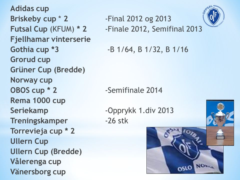 Adidas cup Briskeby cup * 2 -Final 2012 og 2013 Futsal Cup (KFUM) * 2 -Finale 2012, Semifinal 2013 Fjellhamar vinterserie Gothia cup *3 -B 1/64, B 1/3