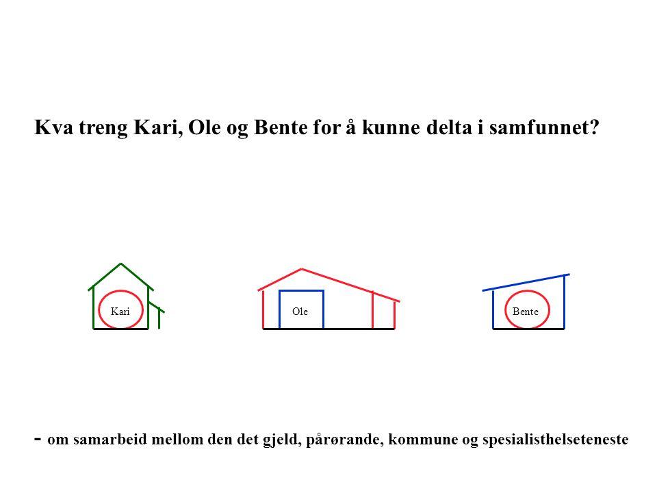 OleBenteKari Kva treng Kari, Ole og Bente for å kunne delta i samfunnet.