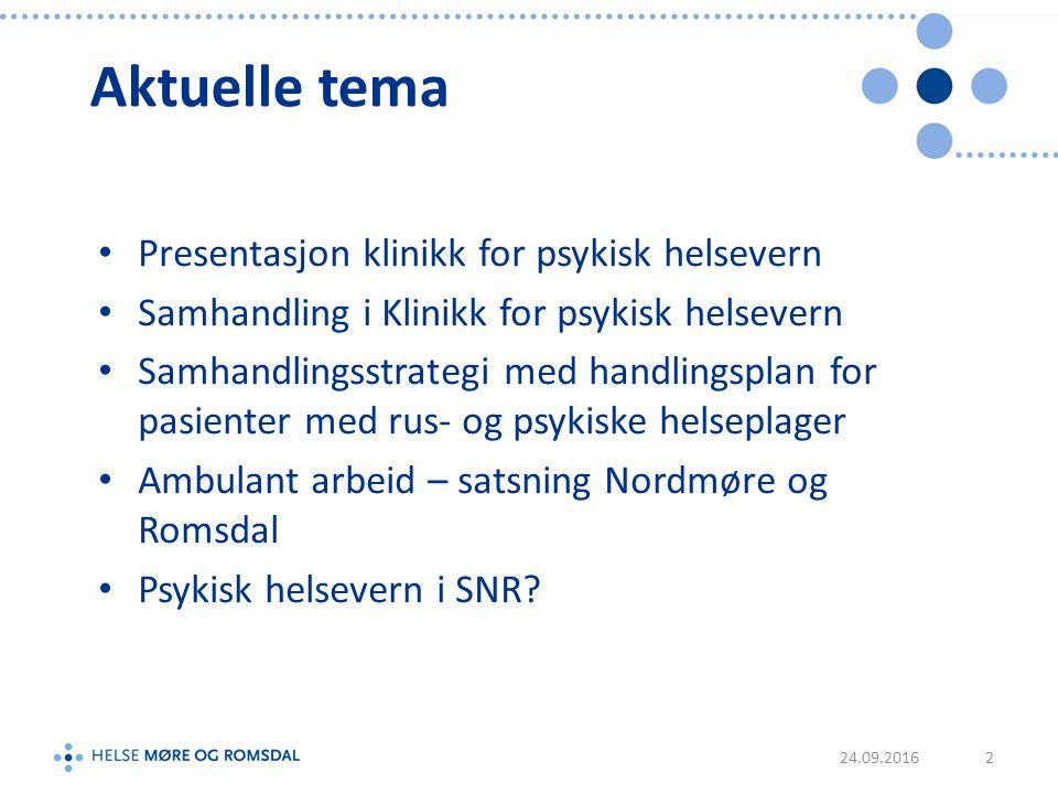 Psykisk helsevern i SNR 39 + 8 senger Voksenhabiliteringstjenesten Klinikksjef deltar i hovedgruppa i konseptfasen Egen gruppe psykiatri i delfunksjonsprogrammet DPS ikke involvert 13