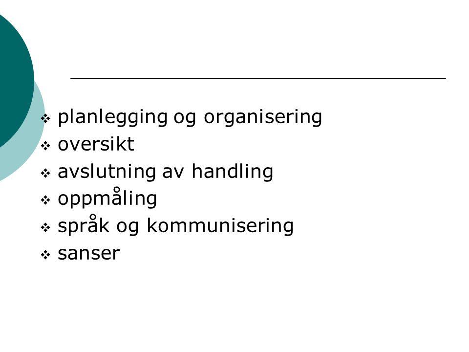  planlegging og organisering  oversikt  avslutning av handling  oppmåling  språk og kommunisering  sanser