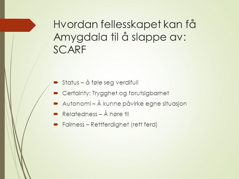 Hvordan fellesskapet kan få Amygdala til å slappe av: SCARF  Status – å føle seg verdifull  Certainty: Trygghet og forutsigbarhet  Autonomi – Å kunne påvirke egne situasjon  Relatedness – Å høre til  Fairness – Rettferdighet (rett ferd)