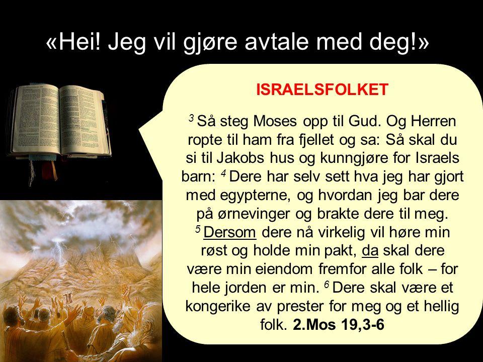«Hei. Jeg vil gjøre avtale med deg!» ISRAELSFOLKET 3 Så steg Moses opp til Gud.