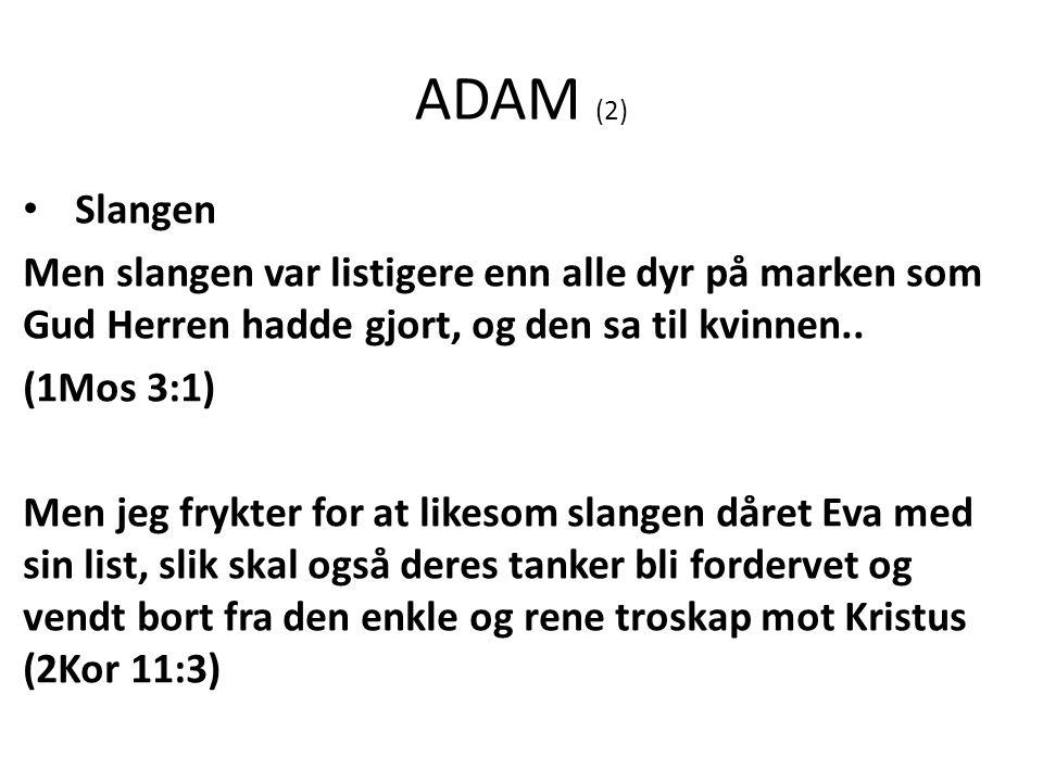 ADAM (2) Slangen Men slangen var listigere enn alle dyr på marken som Gud Herren hadde gjort, og den sa til kvinnen..