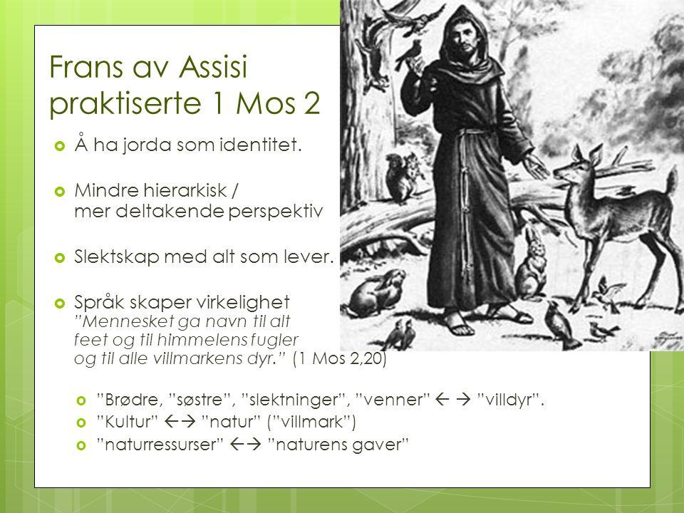 Frans av Assisi praktiserte 1 Mos 2  Å ha jorda som identitet.  Mindre hierarkisk / mer deltakende perspektiv  Slektskap med alt som lever.  Språk