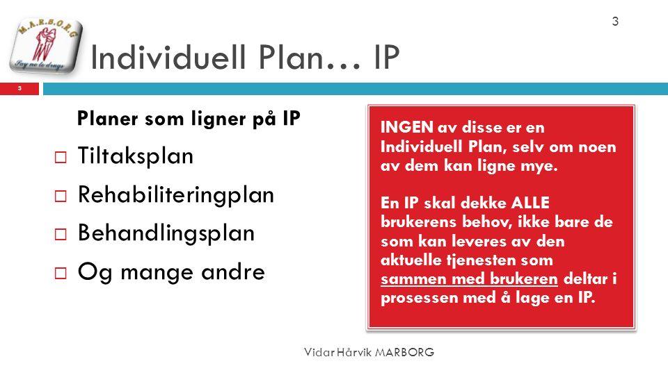 Individuell Plan… IP INGEN av disse er en Individuell Plan, selv om noen av dem kan ligne mye. En IP skal dekke ALLE brukerens behov, ikke bare de som