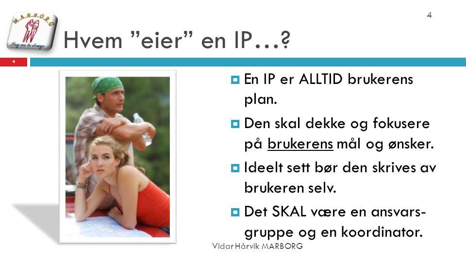 """Hvem """"eier"""" en IP…?  En IP er ALLTID brukerens plan.  Den skal dekke og fokusere på brukerens mål og ønsker.  Ideelt sett bør den skrives av bruker"""