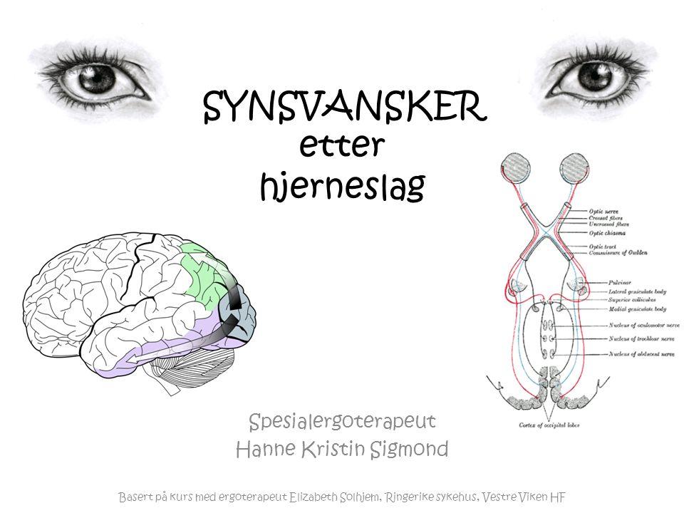 SYNSVANSKER etter hjerneslag Spesialergoterapeut Hanne Kristin Sigmond Basert på kurs med ergoterapeut Elizabeth Solhjem, Ringerike sykehus, Vestre Viken HF