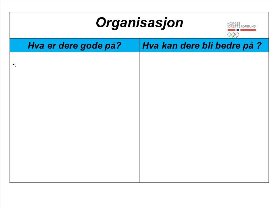 Organisasjon Hva er dere gode på Hva kan dere bli bedre på .