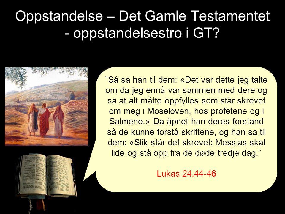 """Oppstandelse – Det Gamle Testamentet - oppstandelsestro i GT? """"Så sa han til dem: «Det var dette jeg talte om da jeg ennå var sammen med dere og sa at"""