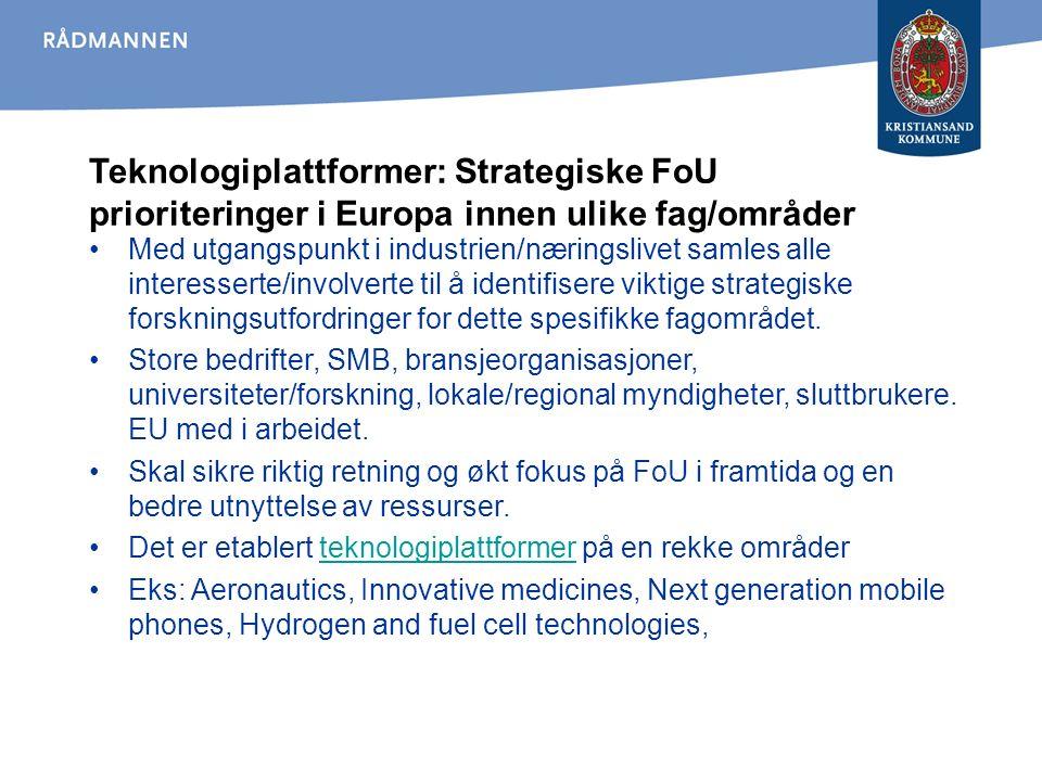 Teknologiplattformer: Strategiske FoU prioriteringer i Europa innen ulike fag/områder Med utgangspunkt i industrien/næringslivet samles alle interesserte/involverte til å identifisere viktige strategiske forskningsutfordringer for dette spesifikke fagområdet.