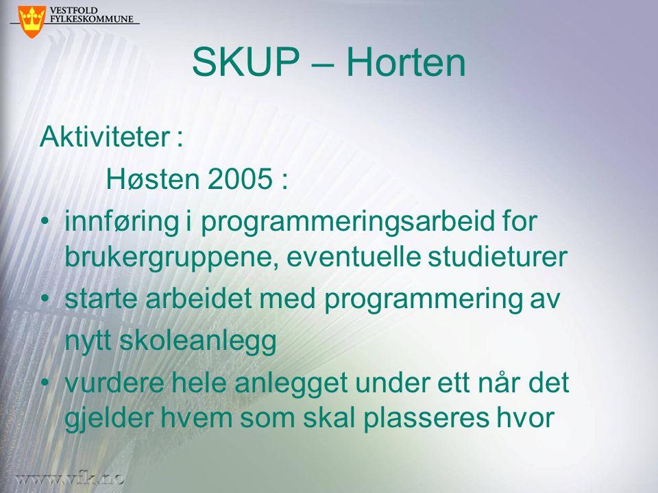 SKUP – Horten Aktiviteter : Høsten 2005 : innføring i programmeringsarbeid for brukergruppene, eventuelle studieturer starte arbeidet med programmerin