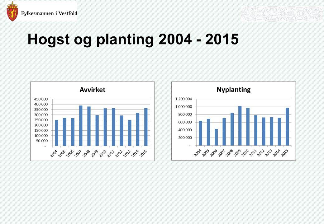 Hogst og planting 2004 - 2015