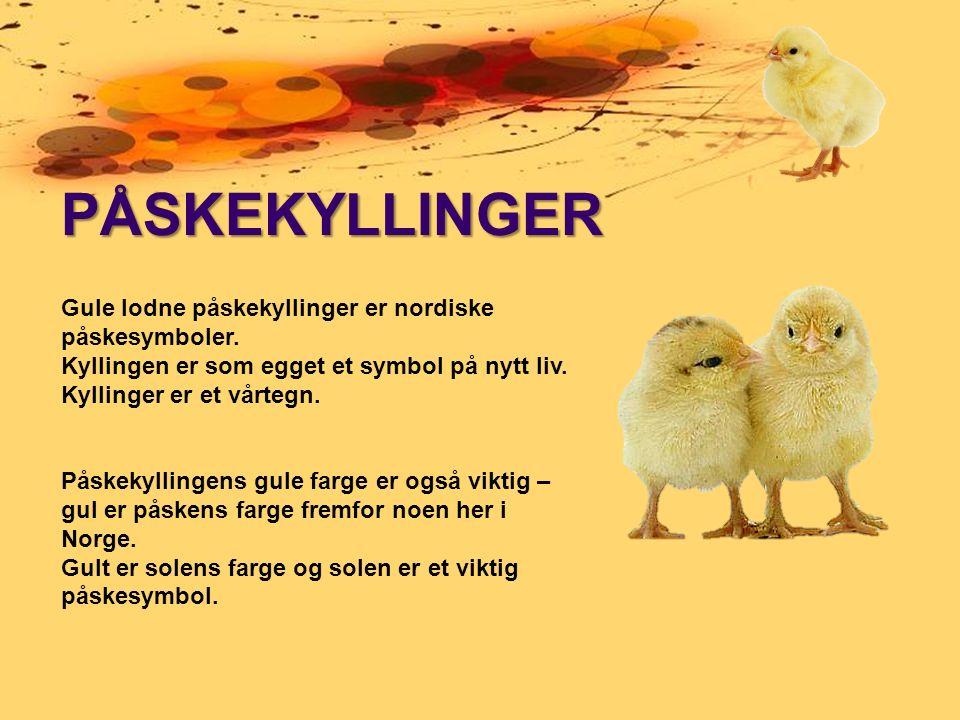 PÅSKEKYLLINGER Gule lodne påskekyllinger er nordiske påskesymboler.