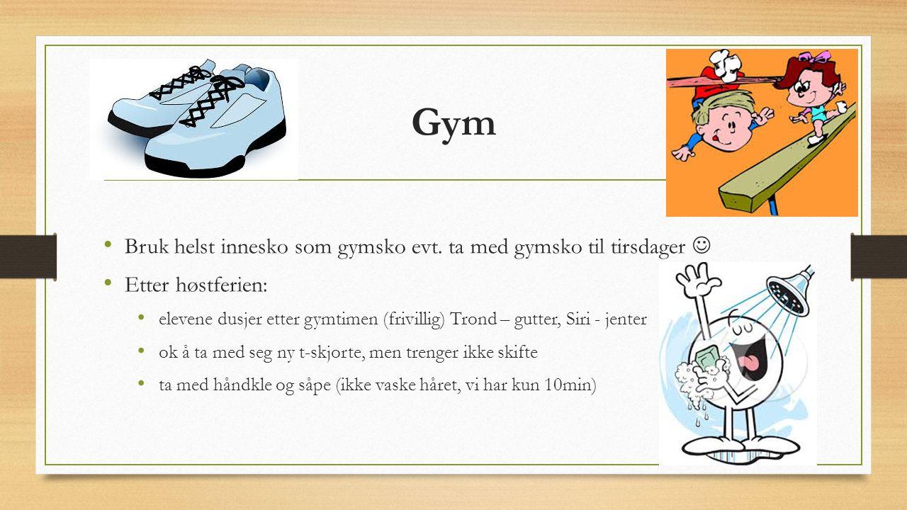 Gym Bruk helst innesko som gymsko evt.