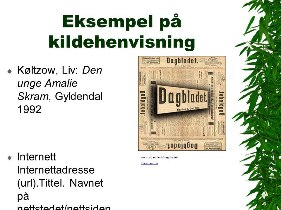 Eksempel på kildehenvisning  Køltzow, Liv: Den unge Amalie Skram, Gyldendal 1992  Internett Internettadresse (url).Tittel.